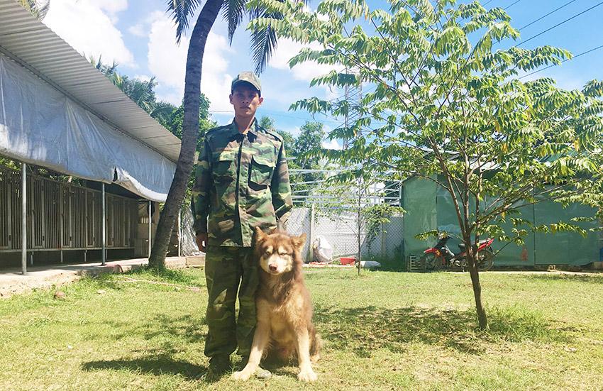 huấn luyện chó alaska