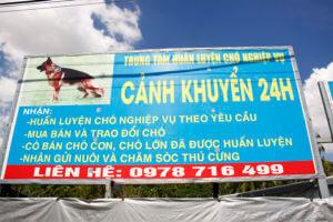 huan-luyen-cho-canh-khuyen-24h-4