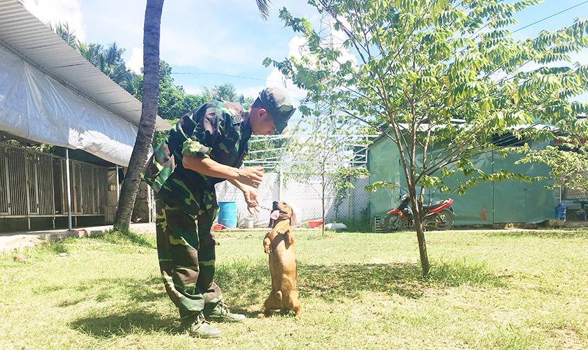 huấn luyện chó lạp xưởng