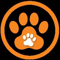 Sự hài lòng của Quý khách là tiêu chí để Trung tâm Cảnh Khuyển 24h xây dựng chất lượng dịch vụ. Do đó, chúng tôi sẽ không để khách hàng phàn nàn về thái độ quản lý, nuôi dạy cún cưng tại trung tâm của chúng tôi.