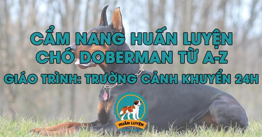 cach-huan-luyen-cho-doberman